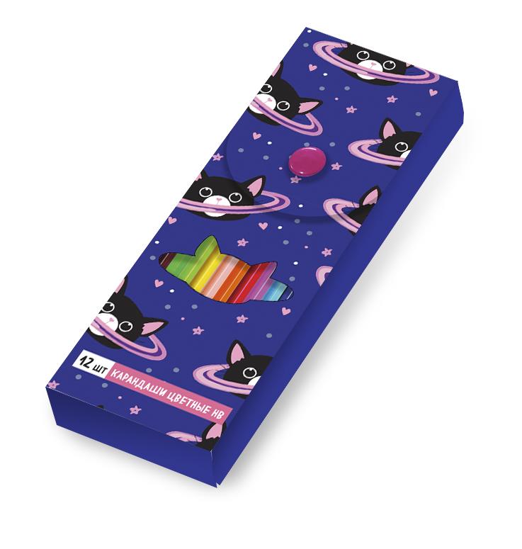 Космокот. Пластиковый пенал с карандашами (12шт)