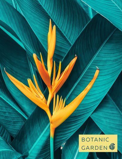 Тетрадь общая на кольцах «Тропический цветок», А5, 100 листов - фото 1
