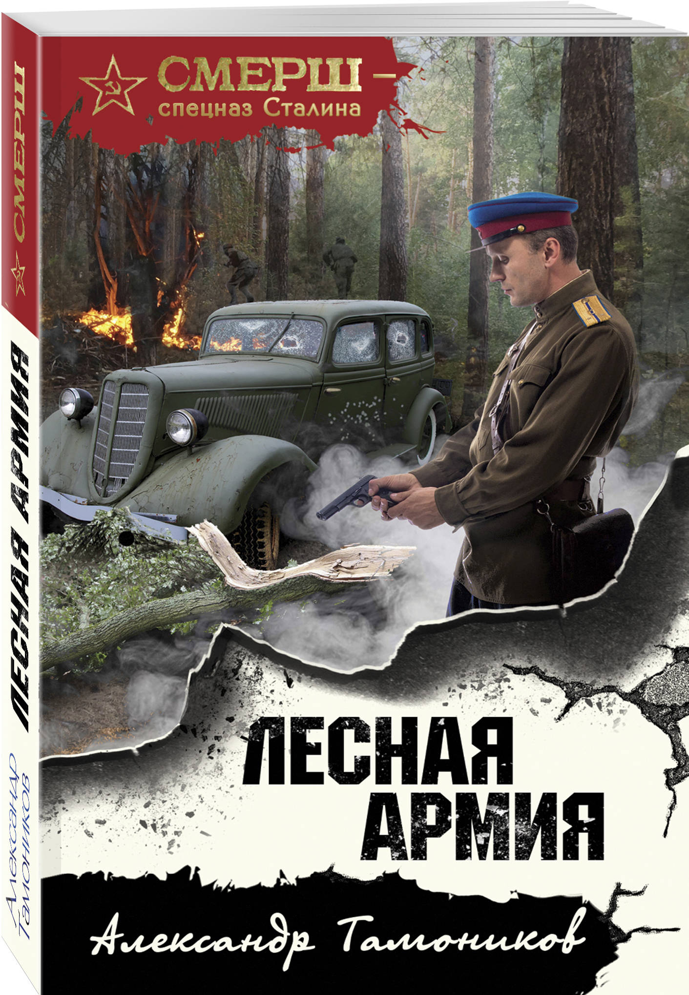 Тамоников Александр Александрович Лесная армия