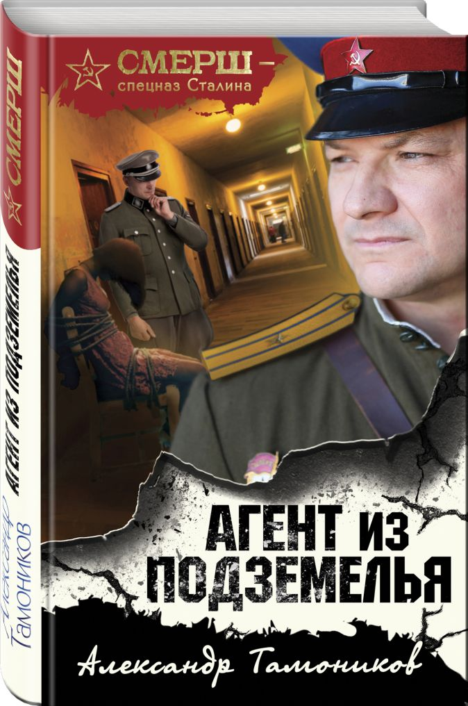 Агент из подземелья Александр Тамоников