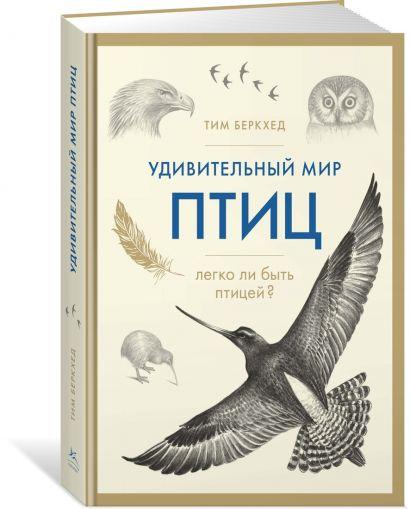 Удивительный мир птиц: Легко ли быть птицей? - фото 1