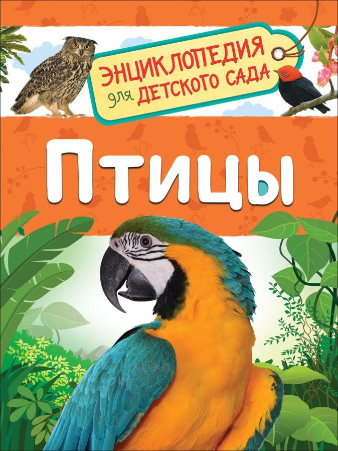 Гальцева С. Н. - Птицы обложка книги