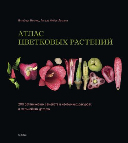Атлас цветковых растений - фото 1