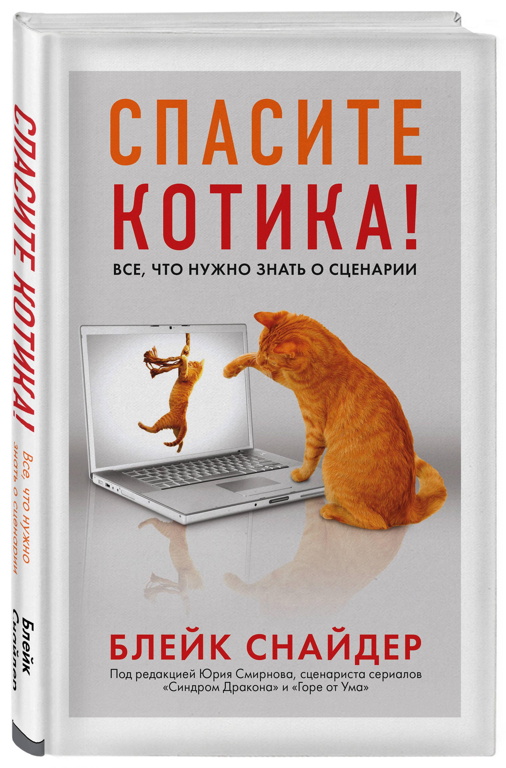 Спасите котика! Все, что нужно знать о сценарии (мягкая обложка) ( Снайдер Блейк  )