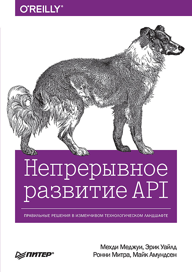 Меджуи М. , Уайлд Э. , Митра Р. , Амундсен М. - Непрерывное развитие API. Правильные решения в изменчивом технологическом ландшафте обложка книги