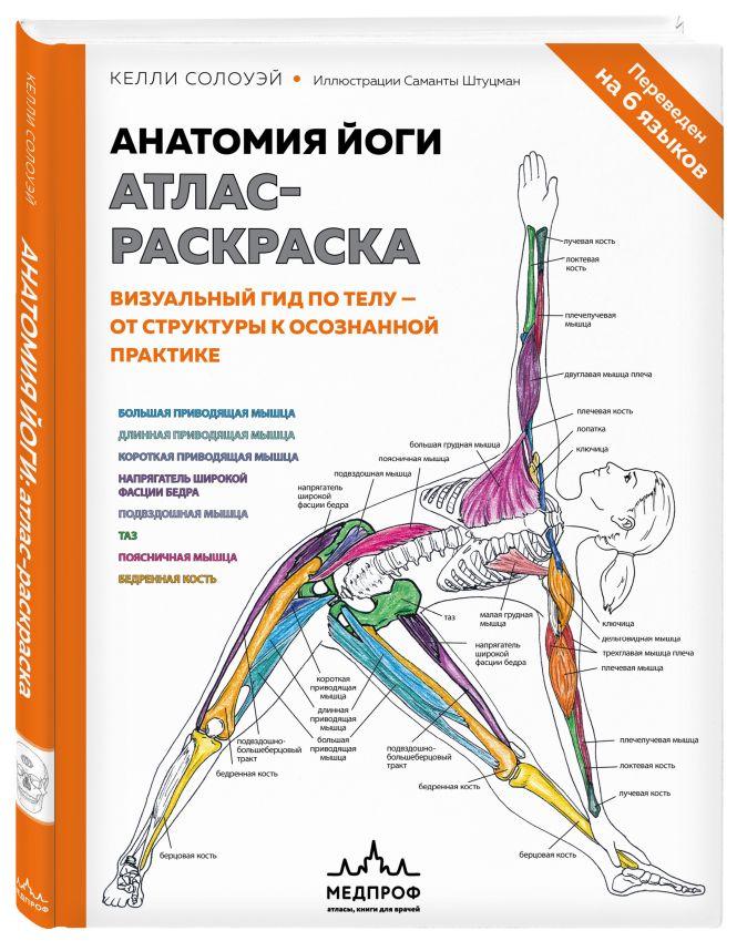 Келли Солоуэй - Анатомия йоги: атлас-раскраска. Визуальный гид по телу — от структуры к осознанной практике обложка книги