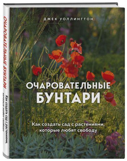 Очаровательные бунтари. Как создать сад с растениями, которые любят свободу - фото 1