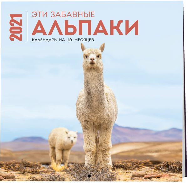 Эти забавные альпаки. Календарь настенный на 16 месяцев на 2021 год (300х300 мм)
