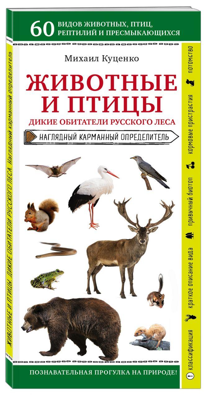Михаил Куценко - Животные и птицы. Дикие обитатели русского леса обложка книги