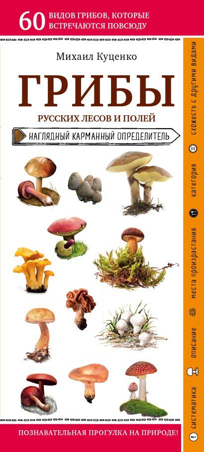 Грибы русских лесов и полей - фото 1