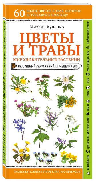 Михаил Куценко - Цветы и травы. Мир удивительных растений обложка книги