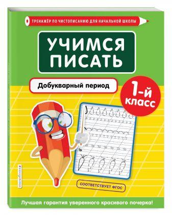 Е. О. Пожилова - Учимся писать. Добукварный период. 1-й класс обложка книги