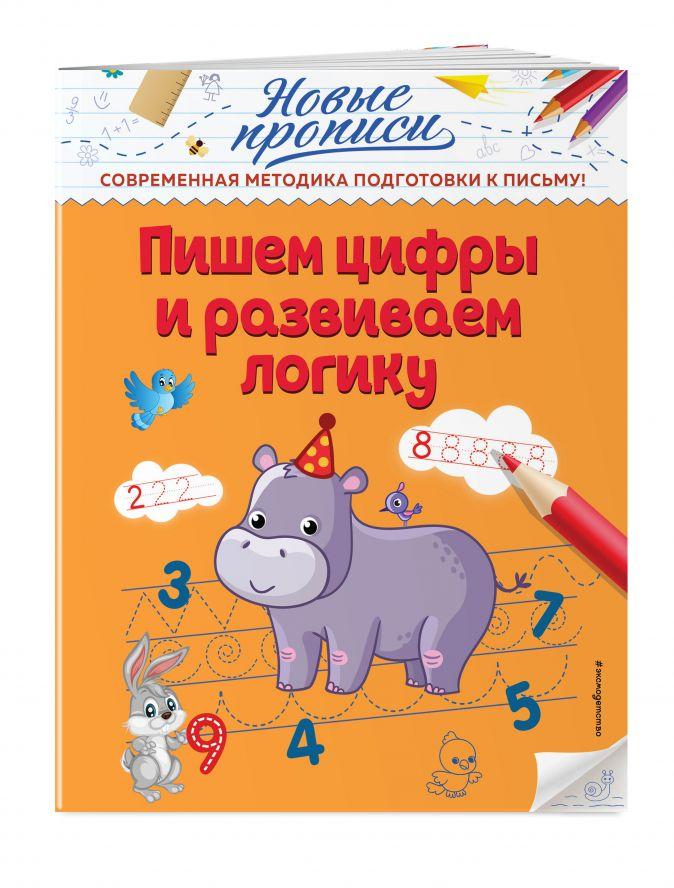 В. А. Кузнецова - Пишем цифры и развиваем логику обложка книги