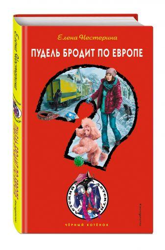 Елена Нестерина - Пудель бродит по Европе обложка книги