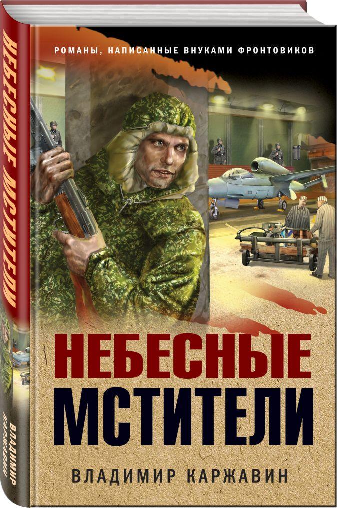 Владимир Каржавин - Небесные мстители обложка книги