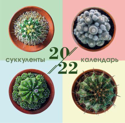 Суккуленты. Календарь настенный на 2022 год (300х300 мм) - фото 1