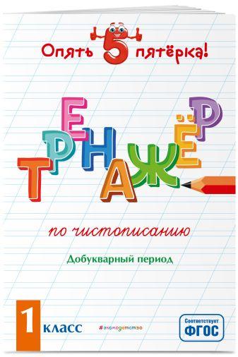 Е. О. Пожилова - Тренажер по чистописанию. Добукварный период. 1 класс обложка книги